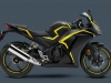 2015-honda-cbr300r-confirmed-for-delivery-photo-gallery_2.jpg